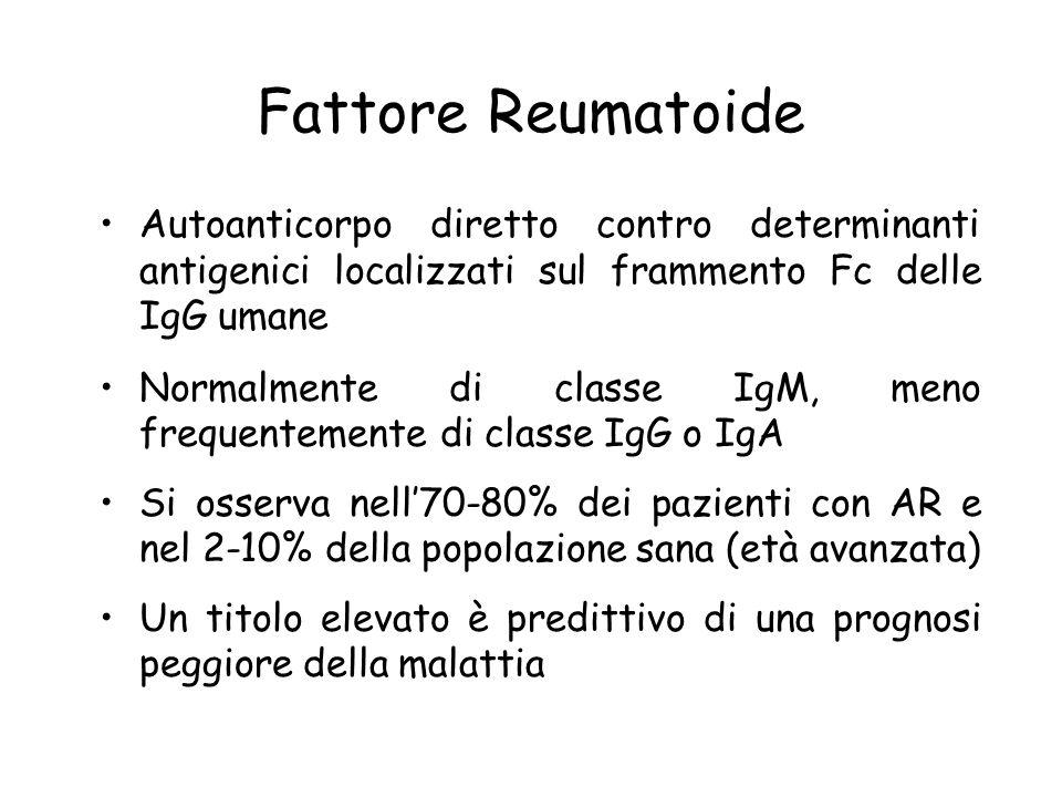 Fattore Reumatoide Autoanticorpo diretto contro determinanti antigenici localizzati sul frammento Fc delle IgG umane Normalmente di classe IgM, meno f