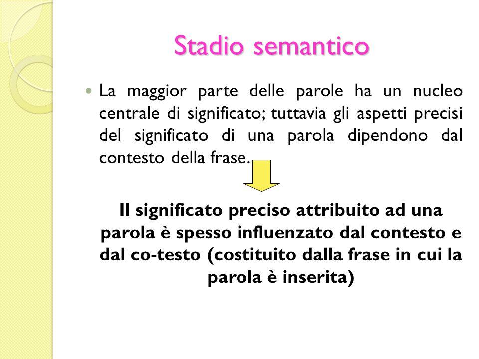 Stadio semantico La maggior parte delle parole ha un nucleo centrale di significato; tuttavia gli aspetti precisi del significato di una parola dipend