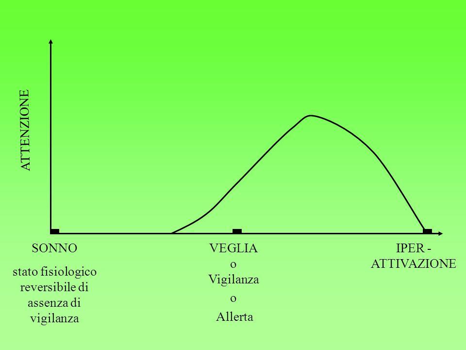 SONNO stato fisiologico reversibile di assenza di vigilanza VEGLIA o Vigilanza o Allerta IPER - ATTIVAZIONE ATTENZIONE