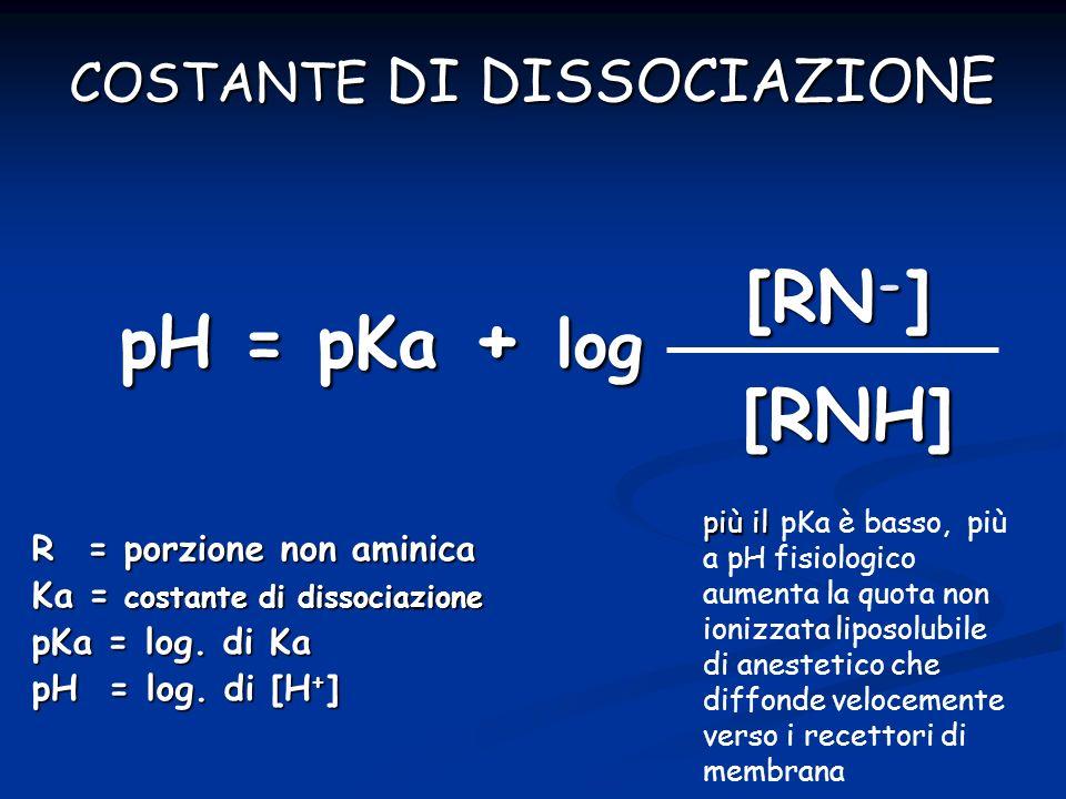 pH = pKa + log [RN - ] [RNH] R = porzione non aminica Ka = costante di dissociazione pKa = log. di Ka pH = log. di [H + ] COSTANTE DI DISSOCIAZIONE pi
