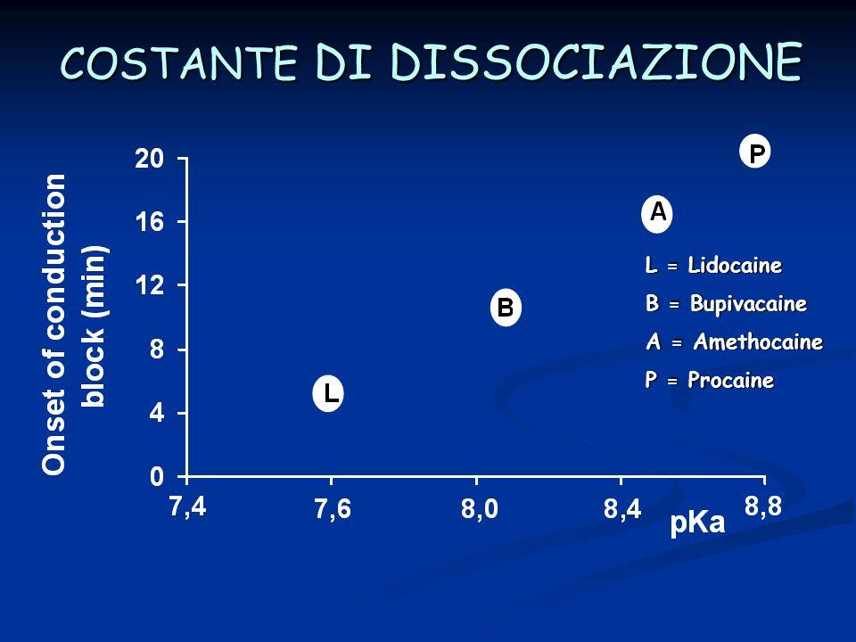 COSTANTE DI DISSOCIAZIONE L = Lidocaine B = Bupivacaine A = Amethocaine P = Procaine