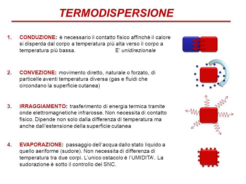 TERMODISPERSIONE 1.CONDUZIONE: è necessario il contatto fisico affinchè il calore si disperda dal corpo a temperatura più alta verso il corpo a temper
