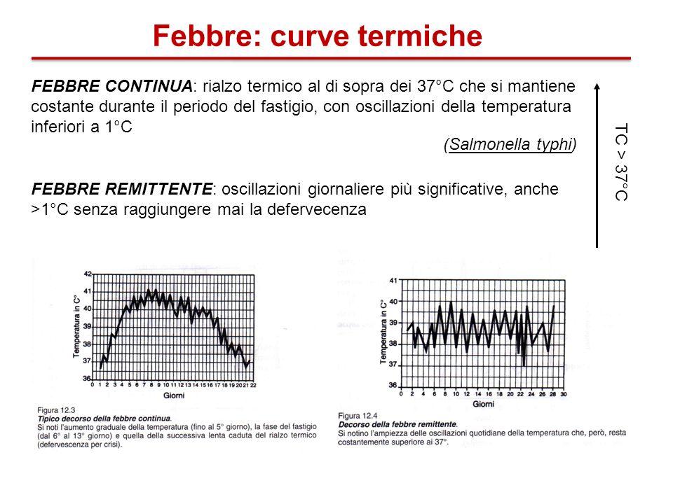 Febbre: curve termiche FEBBRE CONTINUA: rialzo termico al di sopra dei 37°C che si mantiene costante durante il periodo del fastigio, con oscillazioni