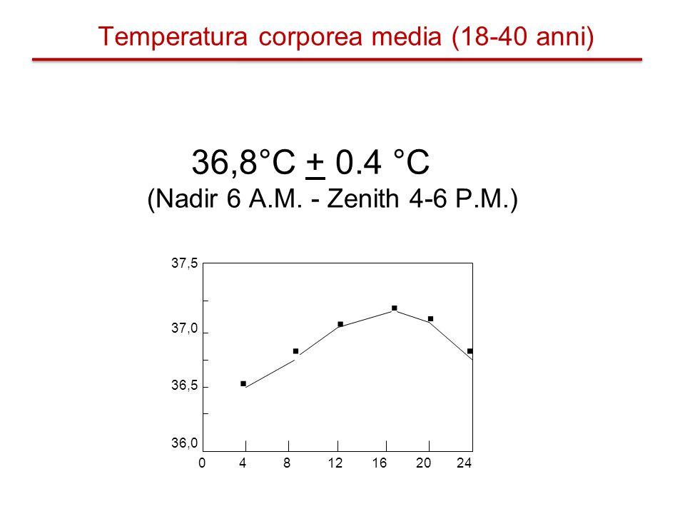 36,8°C + 0.4 °C (Nadir 6 A.M. - Zenith 4-6 P.M.) 0 4 8 12 16 20 24 36,0 36,5 37,0 37,5...... Temperatura corporea media (18-40 anni)