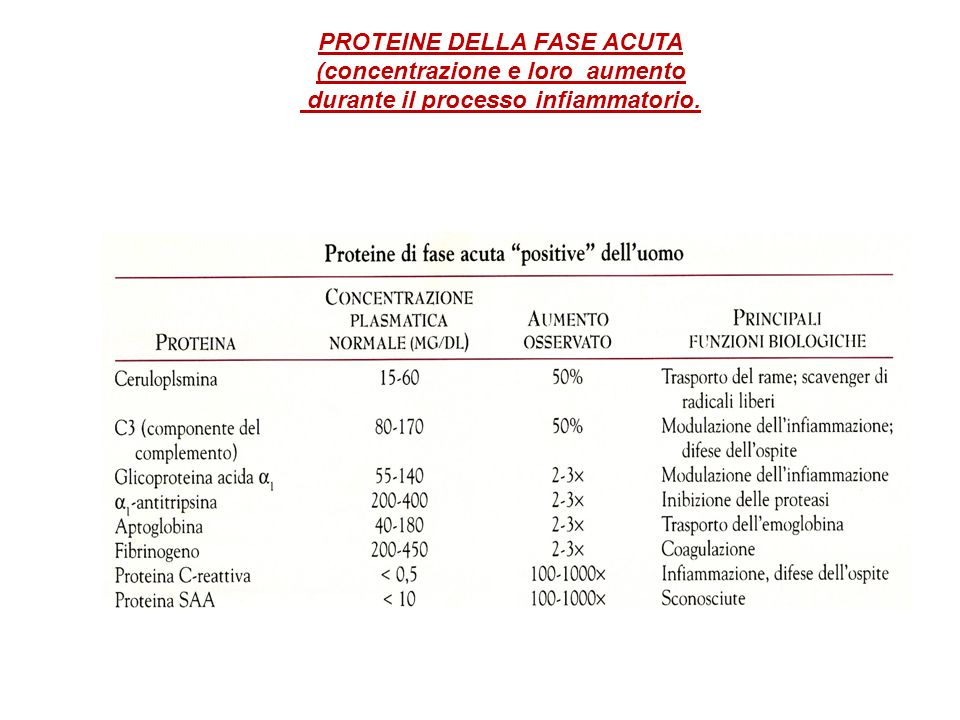 (concentrazione e loro aumento durante il processo infiammatorio.