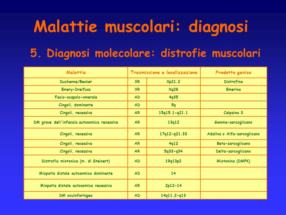 Malattie muscolari: diagnosi 5. Diagnosi molecolare: distrofie muscolari MalattiaTrasmissione e localizzazioneProdotto genico Duchenne/BeckerXRXp21.2D
