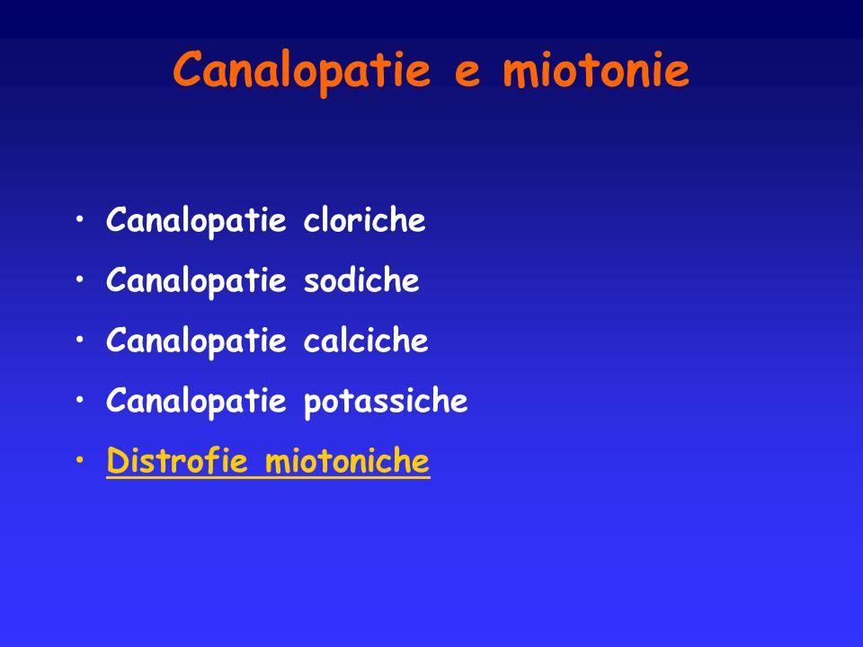 Canalopatie e miotonie Canalopatie cloriche Canalopatie sodiche Canalopatie calciche Canalopatie potassiche Distrofie miotoniche