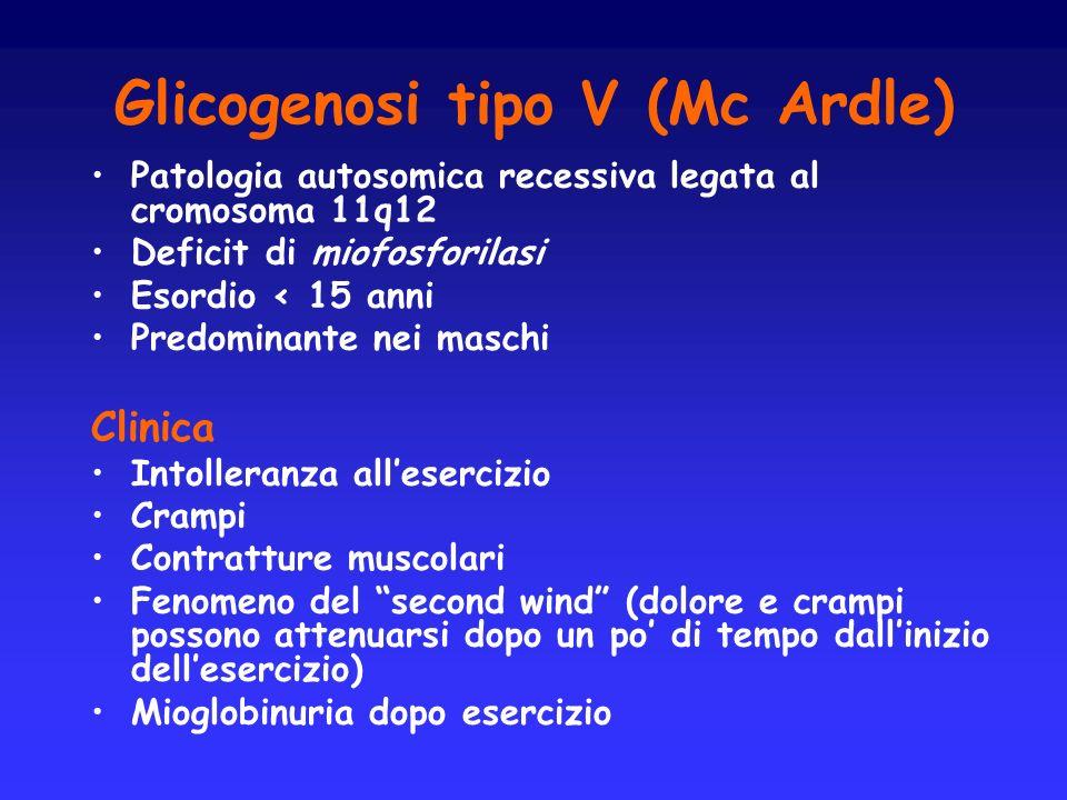 Glicogenosi tipo V (Mc Ardle) Patologia autosomica recessiva legata al cromosoma 11q12 Deficit di miofosforilasi Esordio < 15 anni Predominante nei ma