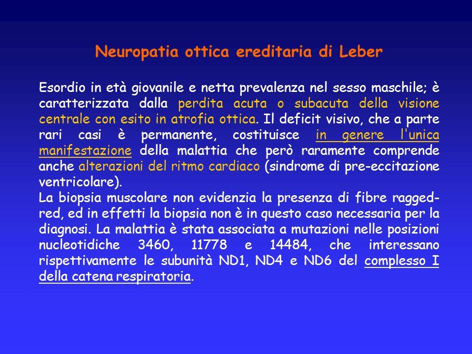 Neuropatia ottica ereditaria di Leber Esordio in età giovanile e netta prevalenza nel sesso maschile; è caratterizzata dalla perdita acuta o subacuta