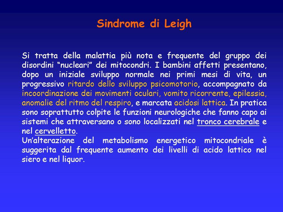 Sindrome di Leigh Si tratta della malattia più nota e frequente del gruppo dei disordini nucleari dei mitocondri. I bambini affetti presentano, dopo u