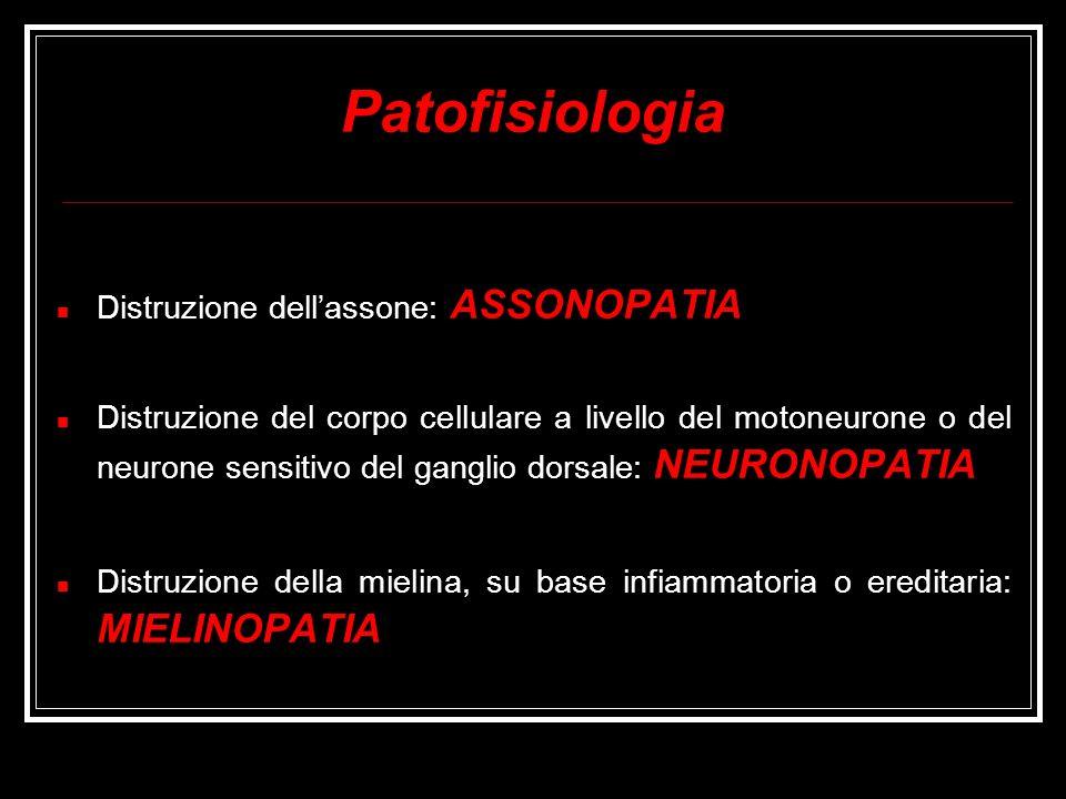 Patofisiologia Distruzione dellassone: ASSONOPATIA Distruzione del corpo cellulare a livello del motoneurone o del neurone sensitivo del ganglio dorsa
