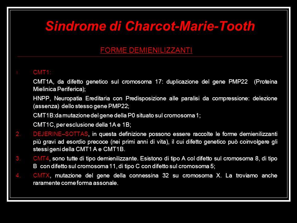 Sindrome di Charcot-Marie-Tooth FORME DEMIENILIZZANTI 1. CMT1: CMT1A, da difetto genetico sul cromosoma 17: duplicazione del gene PMP22 (Proteina Miel