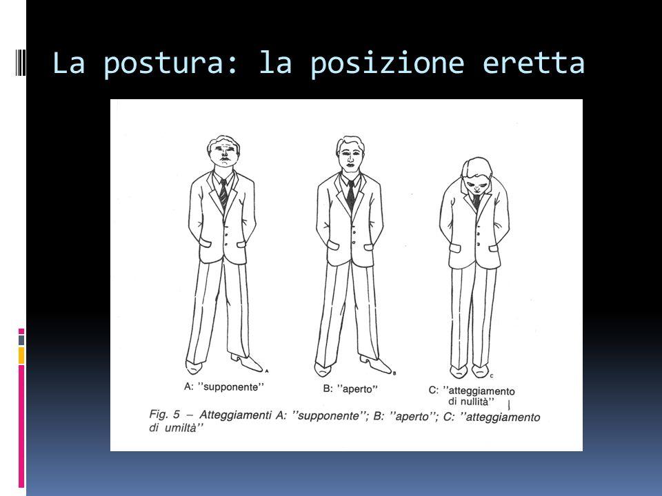 La postura: la posizione eretta