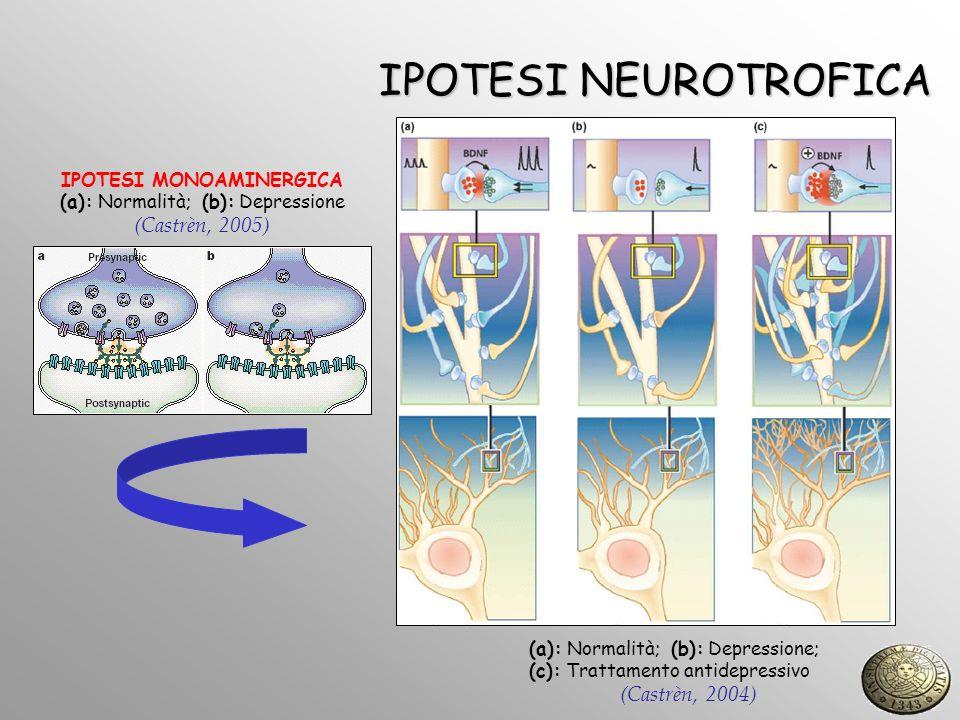 IPOTESI NEUROTROFICA (a): Normalità; (b): Depressione; (c): Trattamento antidepressivo (Castrèn, 2004) IPOTESI MONOAMINERGICA (a): Normalità; (b): Dep