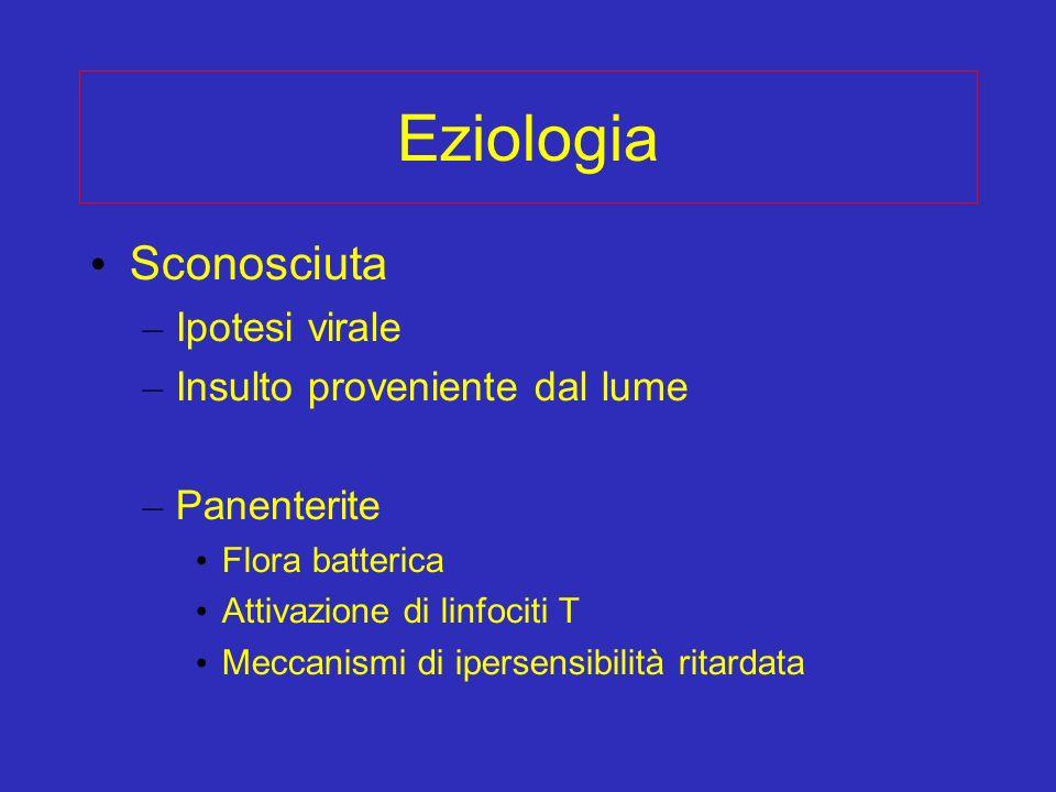 Eziologia Sconosciuta – Ipotesi virale – Insulto proveniente dal lume – Panenterite Flora batterica Attivazione di linfociti T Meccanismi di ipersensi