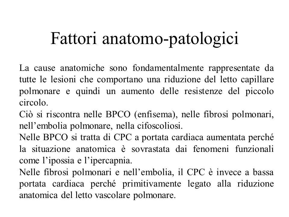 Fattori anatomo-patologici La cause anatomiche sono fondamentalmente rappresentate da tutte le lesioni che comportano una riduzione del letto capillare polmonare e quindi un aumento delle resistenze del piccolo circolo.
