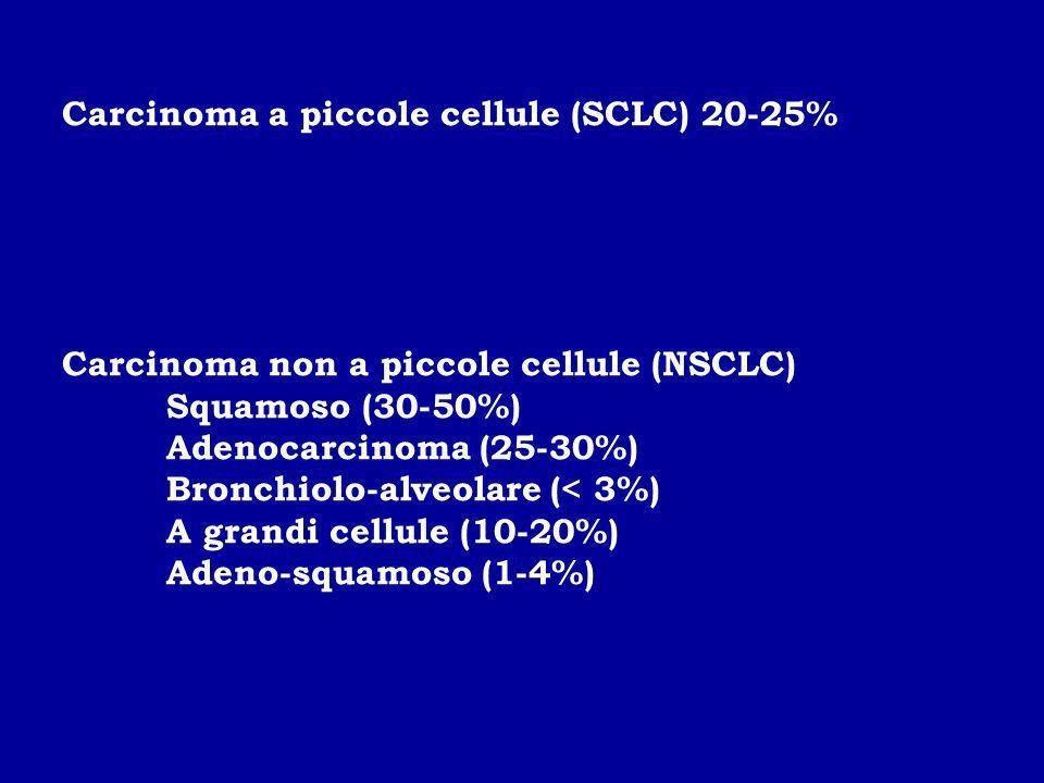 Carcinoma a piccole cellule (SCLC) 20-25% Carcinoma non a piccole cellule (NSCLC) Squamoso (30-50%) Adenocarcinoma (25-30%) Bronchiolo-alveolare (< 3%