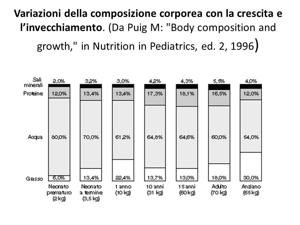 Variazioni della composizione corporea con la crescita e linvecchiamento. (Da Puig M: