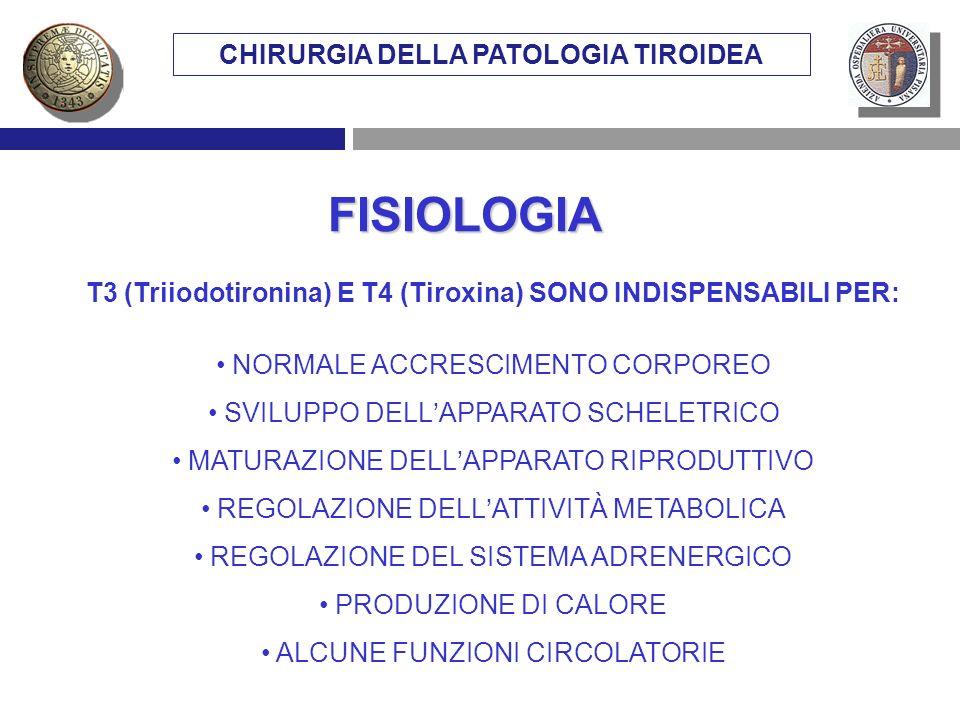 FISIOLOGIA T3 (Triiodotironina) E T4 (Tiroxina) SONO INDISPENSABILI PER: NORMALE ACCRESCIMENTO CORPOREO SVILUPPO DELLAPPARATO SCHELETRICO MATURAZIONE