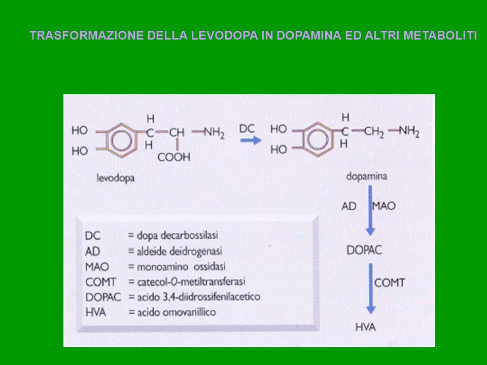 Farmaci che aumentano la funzione Dopaminergica L-DOPA (levodopa) Precursore della Dopamimina, che supera la barriera ematoncefalica Si associa a inibitori della DOPA decarbossilasi che non passano la barriera ematoncefalica carbidopa (sinemet) benserazide (madopar) si tratta della terapia più efficace migliora la bradicinesia e la rigidità più che il tremore