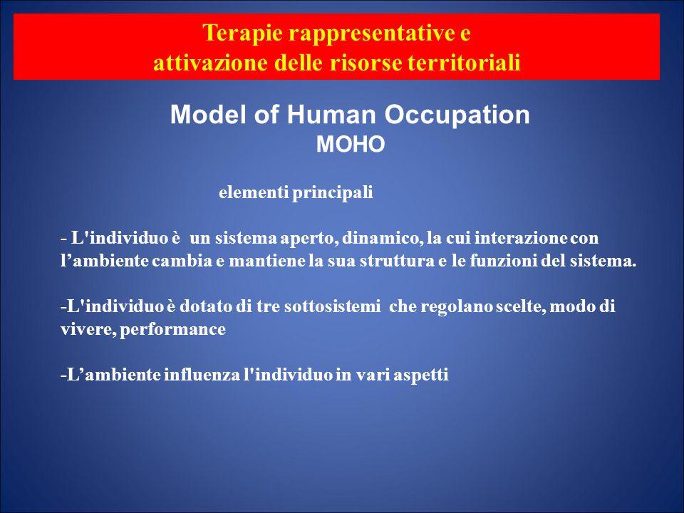 Model of Human Occupation MOHO elementi principali - L'individuo è un sistema aperto, dinamico, la cui interazione con lambiente cambia e mantiene la