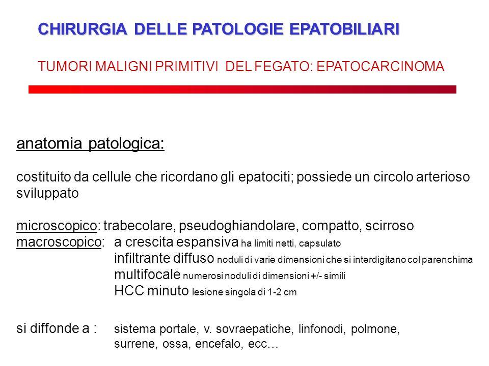 CHIRURGIA DELLE PATOLOGIE EPATOBILIARI TUMORI MALIGNI PRIMITIVI DEL FEGATO: EPATOCARCINOMA anatomia patologica: costituito da cellule che ricordano gl