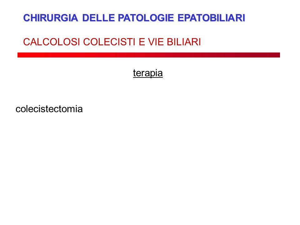 CHIRURGIA DELLE PATOLOGIE EPATOBILIARI CALCOLOSI COLECISTI E VIE BILIARI terapia colecistectomia