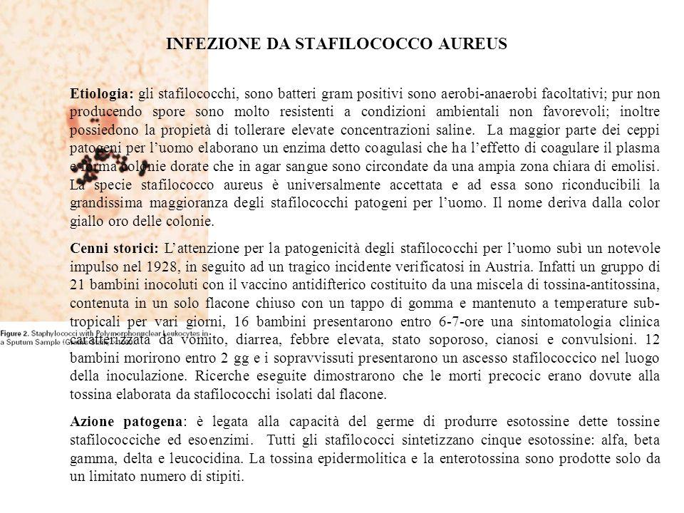 Etiologia: gli stafilococchi, sono batteri gram positivi sono aerobi-anaerobi facoltativi; pur non producendo spore sono molto resistenti a condizioni