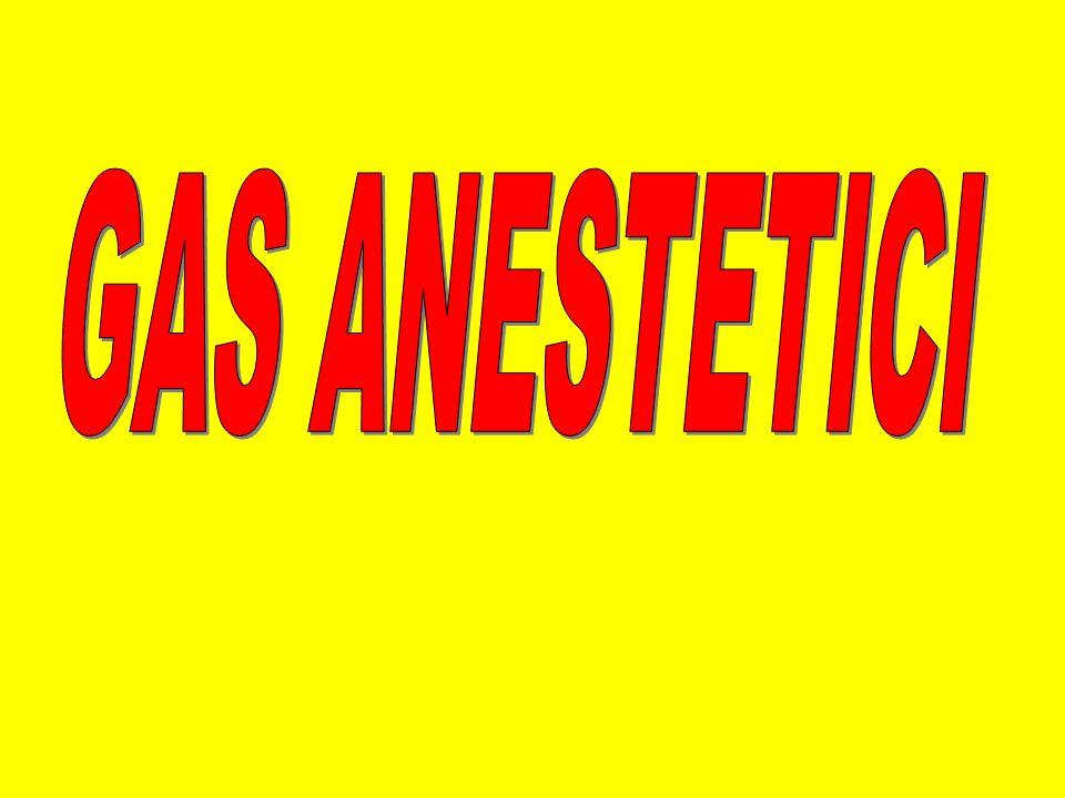 DISPOSITIVI DI PROTEZIONE INDIVIDUALE Doppio paio di guanti in latex Camici monouso di tipo chirurgico Maschere a conchiglia Cuffie Occhiali dotati di protezione laterale Calzari