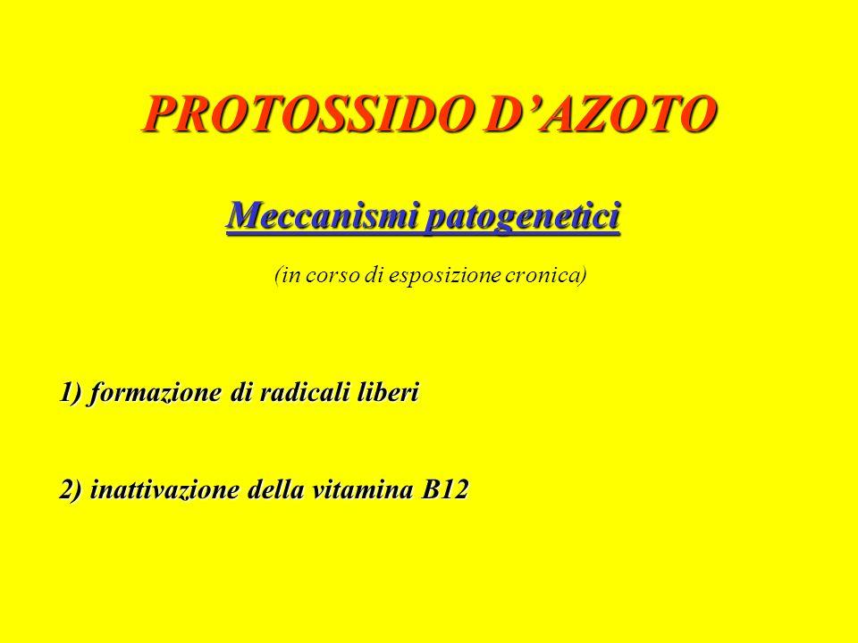 PROTOSSIDO DAZOTO gas incolore, inodore, insapore bassa tossicità acuta, elevata stabilità, non irritabilità, non infiammabilità basso coefficiente di ripartizione sangue/gas scarsa solubilità nel sangue e nei tessuti rapida eliminazione per via urinaria e respiratoria trasformazione riduttiva con formazione di radicali liberi (< 38 mm di Hg di O2) trasformazione ossidativa a ossido nitrico e ione nitrito (alchilnitrosamine e diazoalcani)