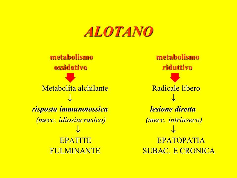 ALOTANO Epatite acuta fulminante autoimmune Cefalea, anoressia, malessere Febbre, ittero, letargia Epatomegalia Ipertransaminasemia, iperbilirubinemia, riduzione del tempo di protrombina