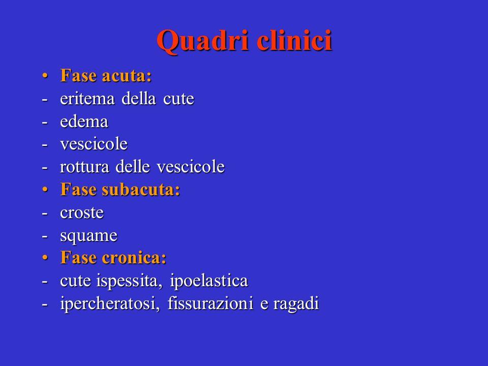 Quadri clinici Polimorfismo delle lesioniPolimorfismo delle lesioni Andamento ciclicoAndamento ciclico Sintomo principale: pruritoSintomo principale: prurito