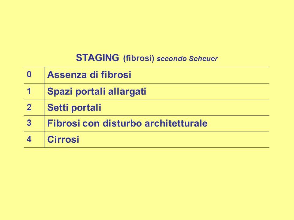 STAGING (fibrosi) secondo Scheuer 0 Assenza di fibrosi 1 Spazi portali allargati 2 Setti portali 3 Fibrosi con disturbo architetturale 4 Cirrosi
