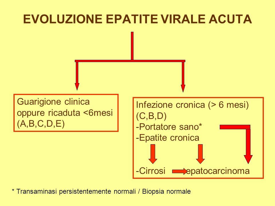 EVOLUZIONE EPATITE VIRALE ACUTA Guarigione clinica oppure ricaduta <6mesi (A,B,C,D,E) Infezione cronica (> 6 mesi) (C,B,D) -Portatore sano* -Epatite cronica -Cirrosi epatocarcinoma * Transaminasi persistentemente normali / Biopsia normale