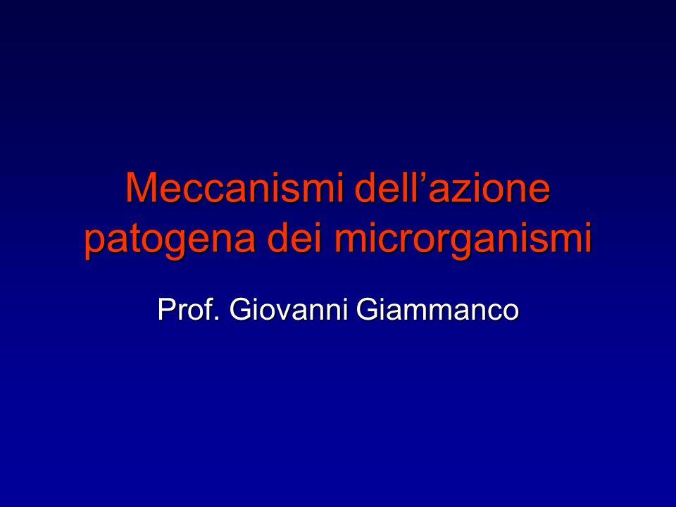 Meccanismi dellazione patogena dei microrganismi Prof. Giovanni Giammanco