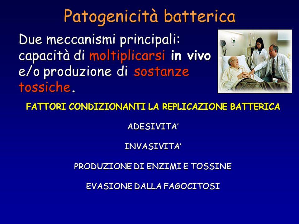Patogenicità batterica Due meccanismi principali: capacità di moltiplicarsi in vivo e/o produzione di sostanze tossiche. FATTORI CONDIZIONANTI LA REPL