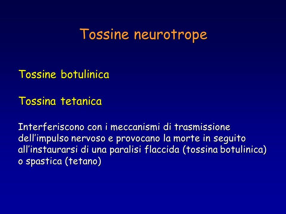 Tossine neurotrope Tossine botulinica Tossina tetanica Interferiscono con i meccanismi di trasmissione dellimpulso nervoso e provocano la morte in seg