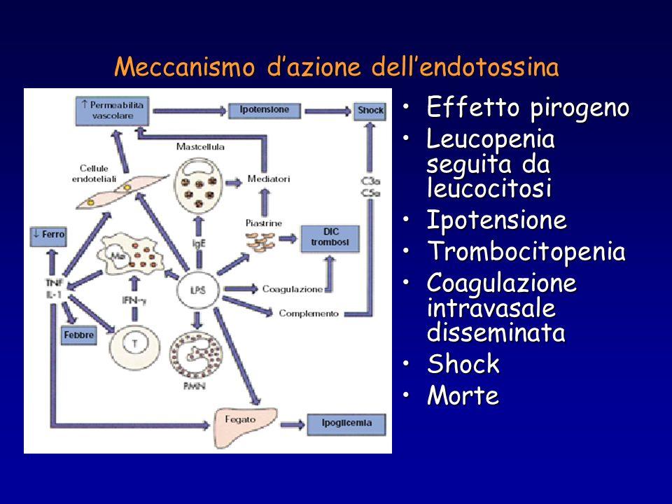 Meccanismo dazione dellendotossina Effetto pirogenoEffetto pirogeno Leucopenia seguita da leucocitosiLeucopenia seguita da leucocitosi IpotensioneIpot