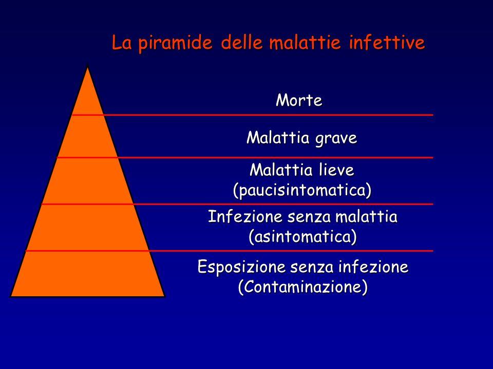 Esposizione senza infezione (Contaminazione) Infezione senza malattia (asintomatica) Malattia lieve (paucisintomatica) Malattia grave Morte La piramid