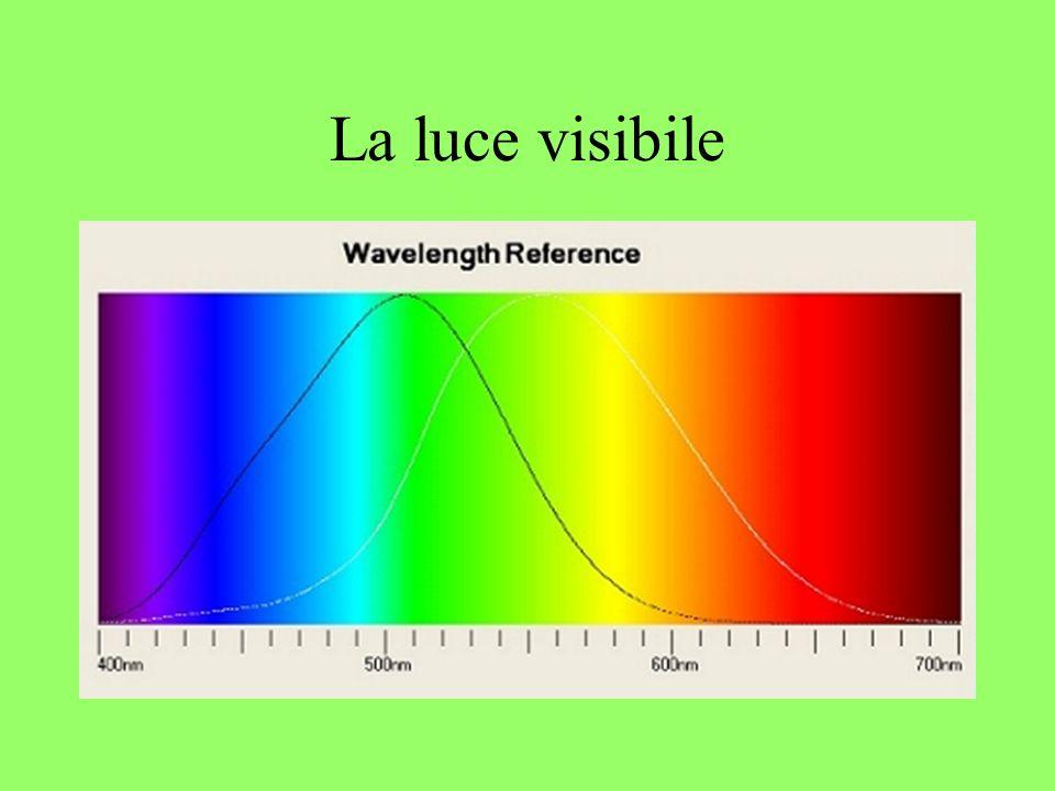 La luce visibile