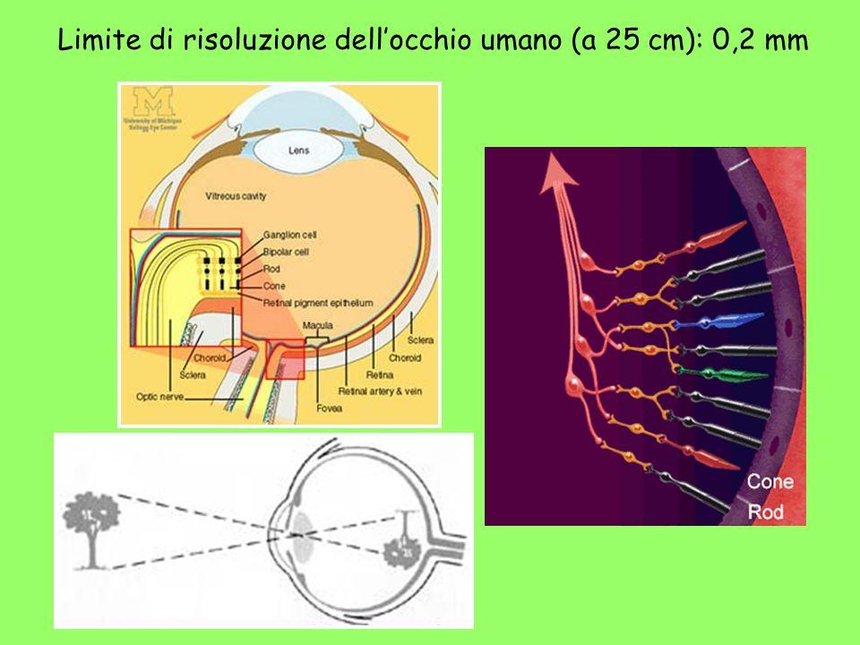 Limite di risoluzione dellocchio umano (a 25 cm): 0,2 mm