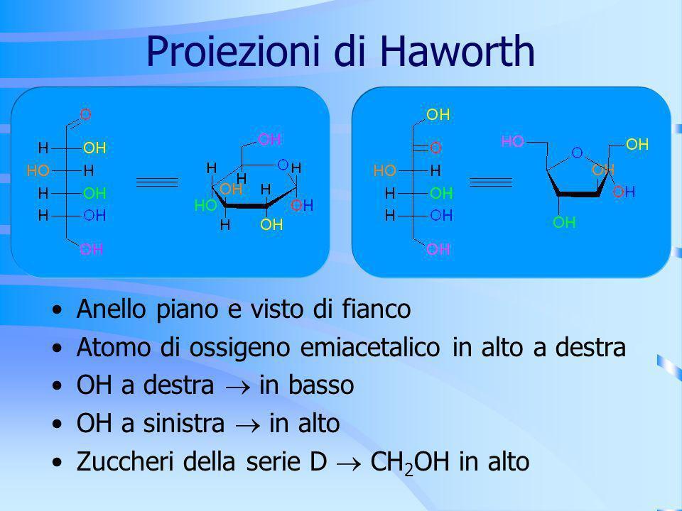 Proiezioni di Haworth Anello piano e visto di fianco Atomo di ossigeno emiacetalico in alto a destra OH a destra in basso OH a sinistra in alto Zucche