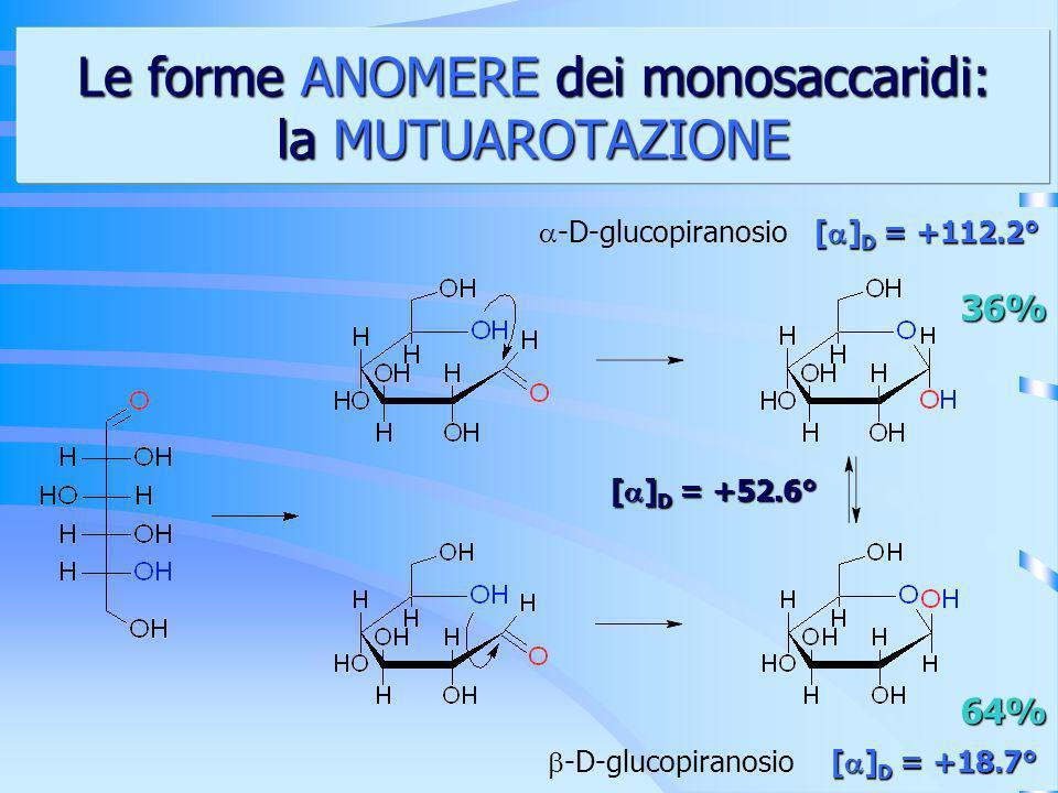 Le forme ANOMERE dei monosaccaridi: la MUTUAROTAZIONE -D-glucopiranosio 36% 64% [ ] D = +112.2° [ ] D = +18.7° [ ] D = +52.6°