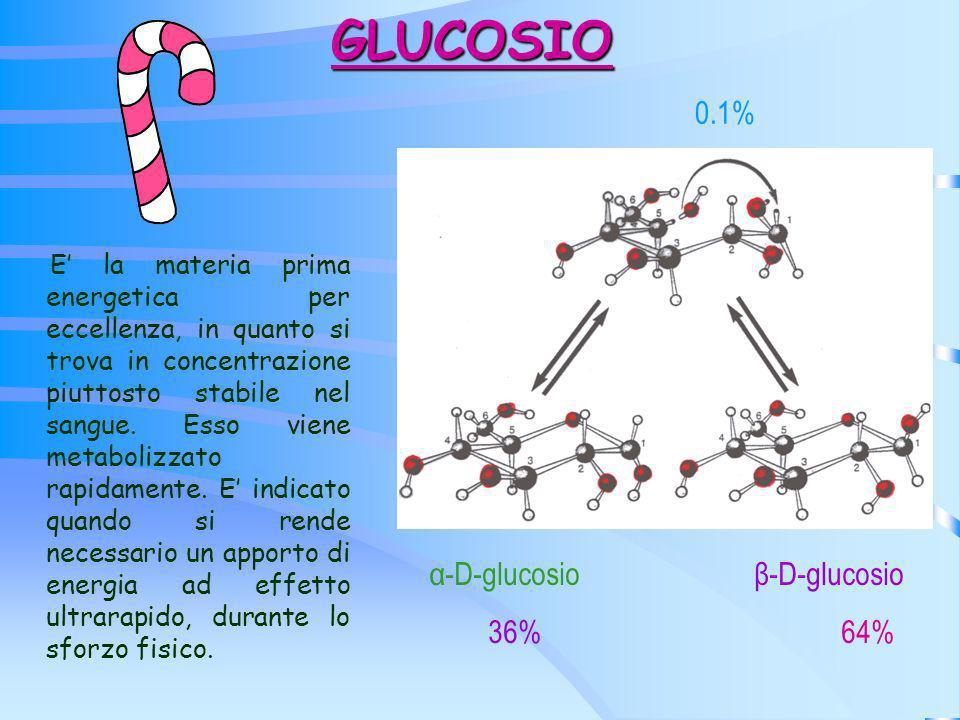 GLUCOSIO E la materia prima energetica per eccellenza, in quanto si trova in concentrazione piuttosto stabile nel sangue. Esso viene metabolizzato rap