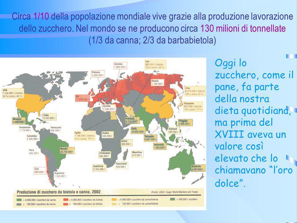 Circa 1/10 della popolazione mondiale vive grazie alla produzione lavorazione dello zucchero. Nel mondo se ne producono circa 130 milioni di tonnellat