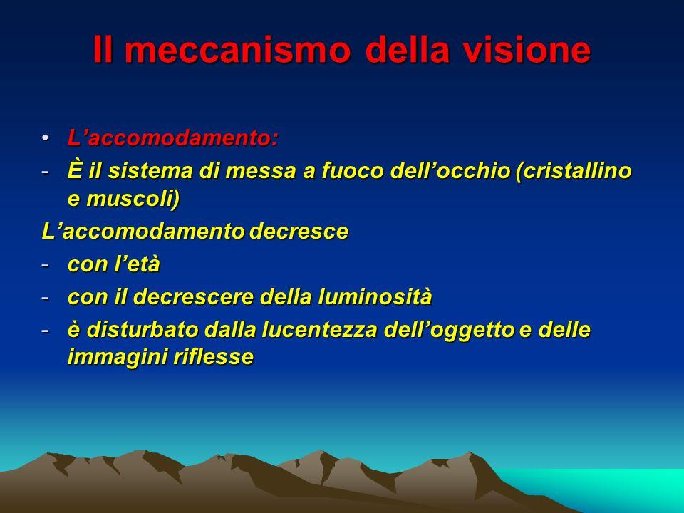Il meccanismo della visione Laccomodamento:Laccomodamento: -È il sistema di messa a fuoco dellocchio (cristallino e muscoli) Laccomodamento decresce -