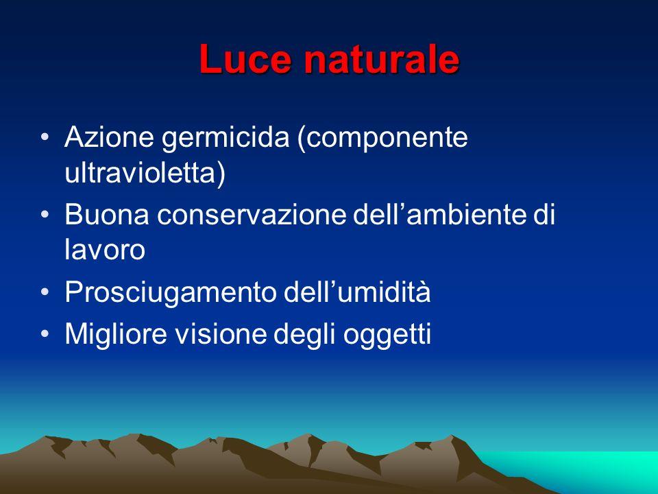 Luce naturale Azione germicida (componente ultravioletta) Buona conservazione dellambiente di lavoro Prosciugamento dellumidità Migliore visione degli