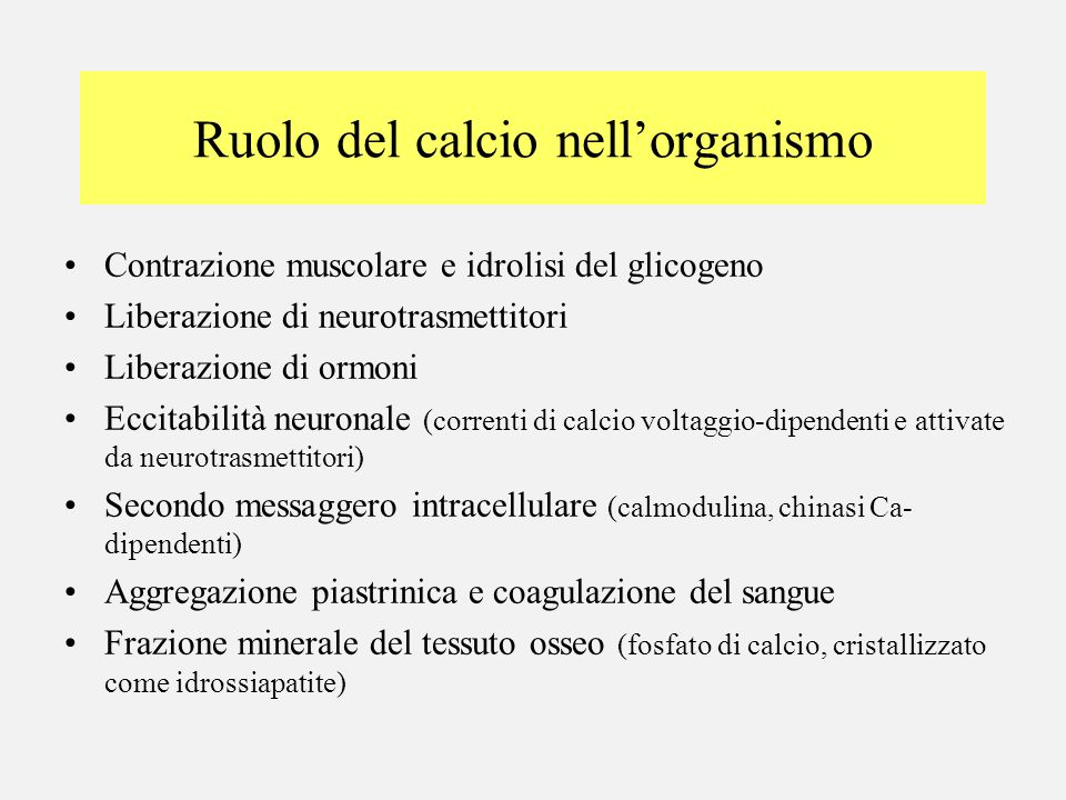 Ruolo del calcio nellorganismo Contrazione muscolare e idrolisi del glicogeno Liberazione di neurotrasmettitori Liberazione di ormoni Eccitabilità neu