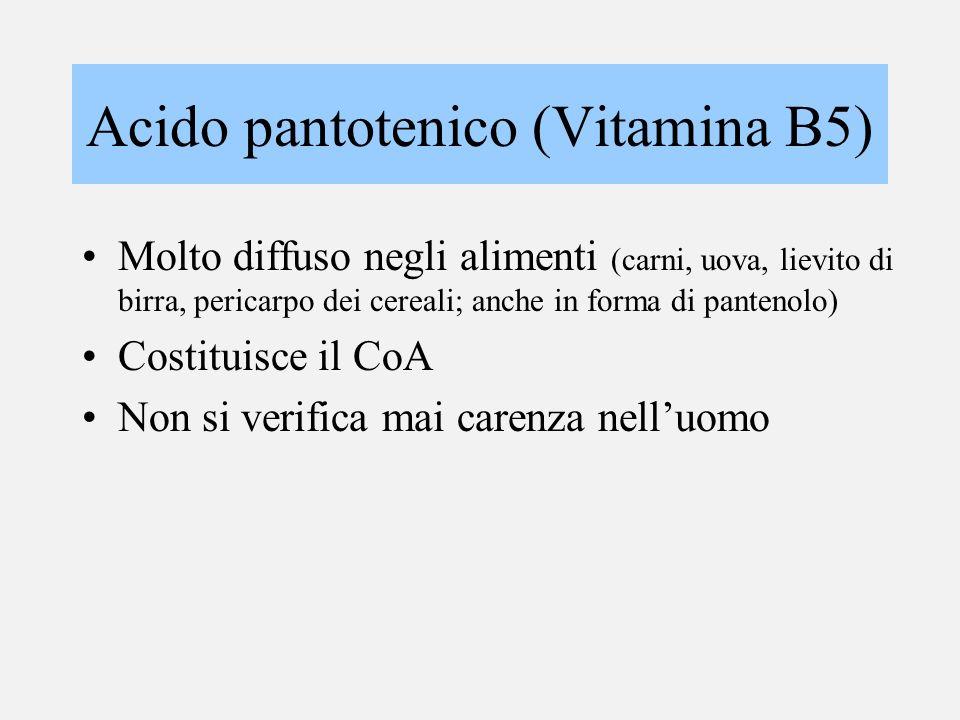 Acido pantotenico (Vitamina B5) Molto diffuso negli alimenti (carni, uova, lievito di birra, pericarpo dei cereali; anche in forma di pantenolo) Costi