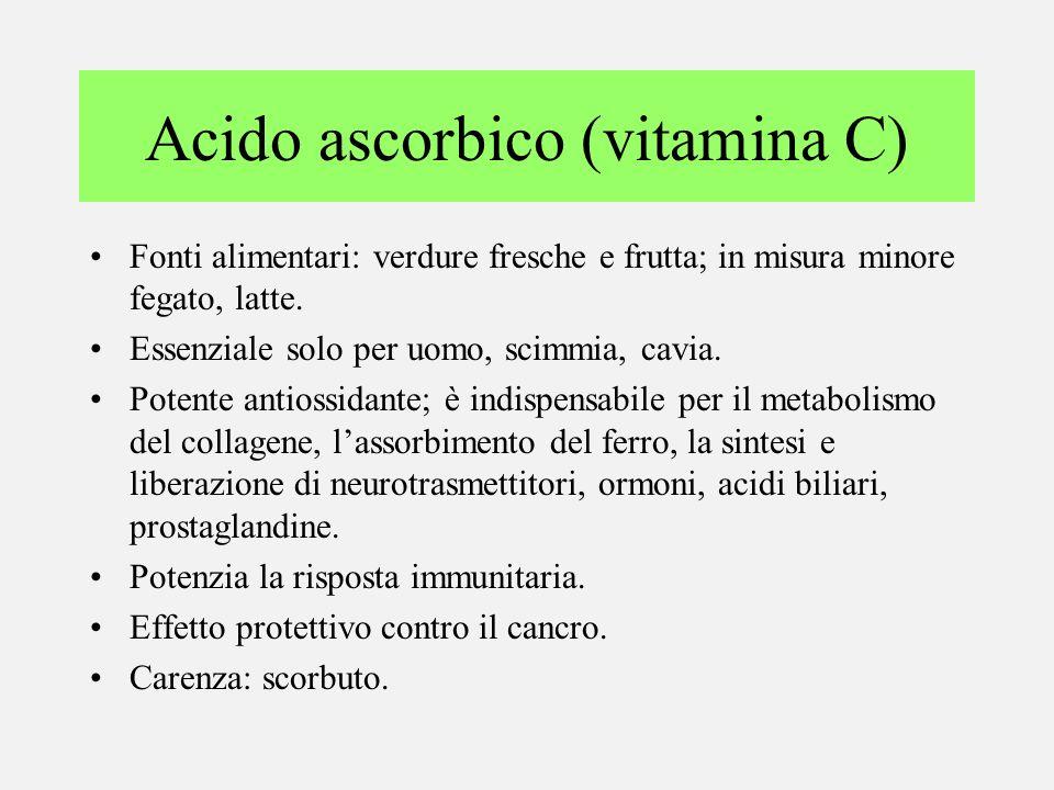 Acido ascorbico (vitamina C) Fonti alimentari: verdure fresche e frutta; in misura minore fegato, latte. Essenziale solo per uomo, scimmia, cavia. Pot